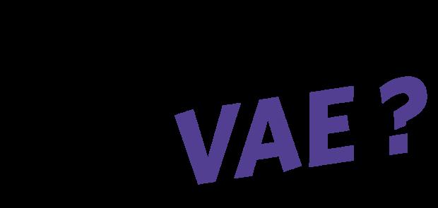 VAE Informatique